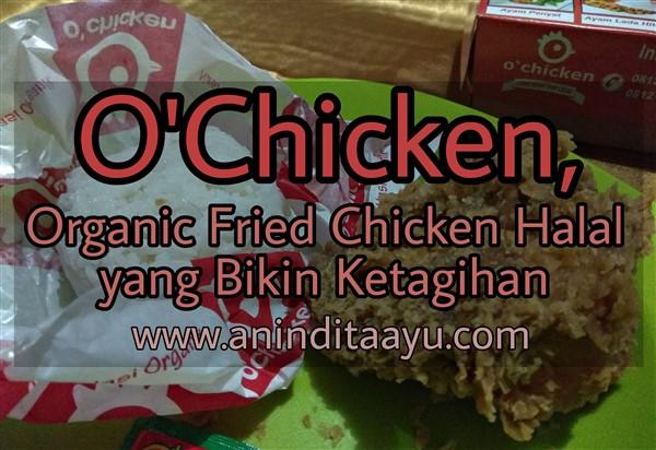 O'Chicken, Organik Fried Chicken Halal yang Bikin Ketagihan